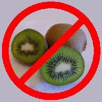 Kiwi Eating Kiwi Fruit Bird Pictures to Pin on Pinterest ...